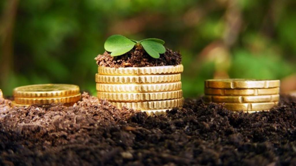 Банки кредиты бизнесу, сельское хозяйство