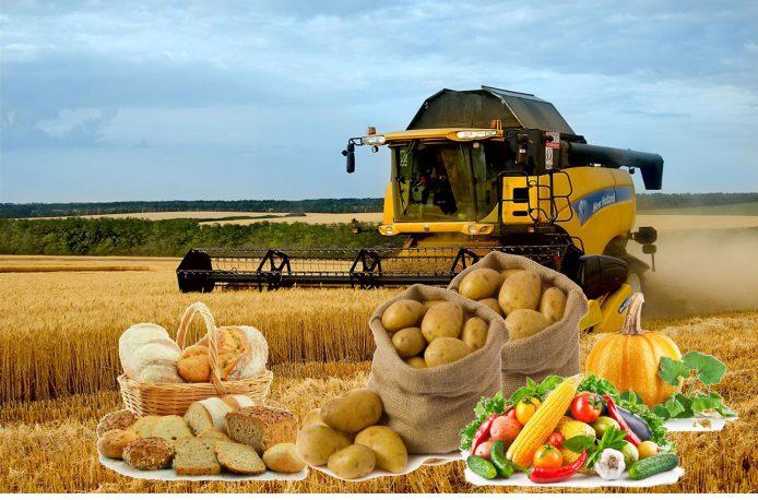 кредит под бизнес, кредит на сельское хозяйство